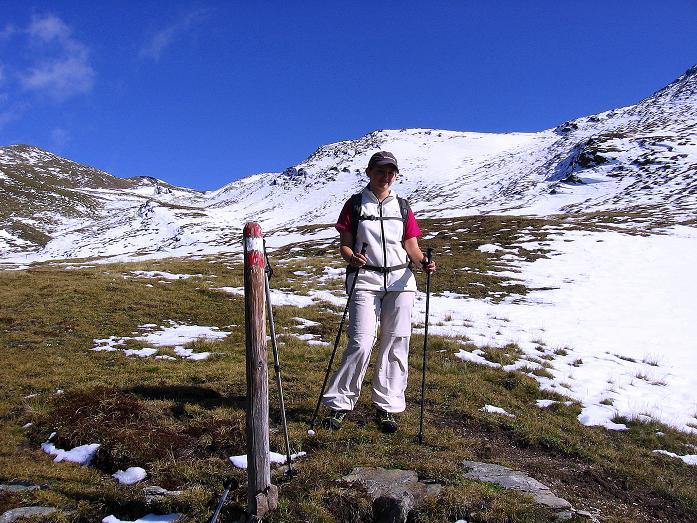 Foto: Andreas Koller / Wander Tour / Vom Glocknerblick auf den Mohar (2604m) / Abstieg vom Mohar nach W / 30.09.2008 22:32:50