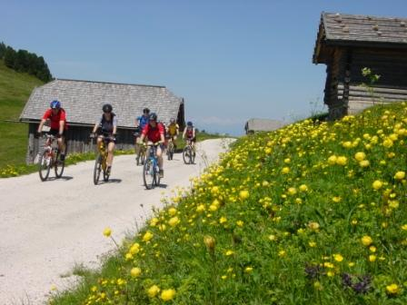 Foto: Rosengarten-Latemar / Mountainbike Tour / Eggentaler Alm / Eggentaler Almen / 27.10.2008 16:32:50
