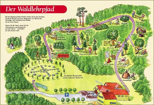 Foto: NaturparkPöllauerTal / Wander Tour / Walderlebnispfad