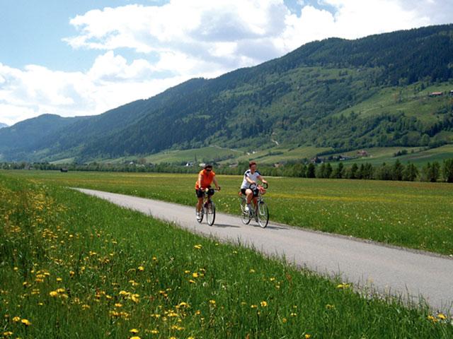 Foto: Samson / Rad Tour / Mitterbergrunde / Murradweg unterhalb von Unternberg / 13.10.2008 14:48:03