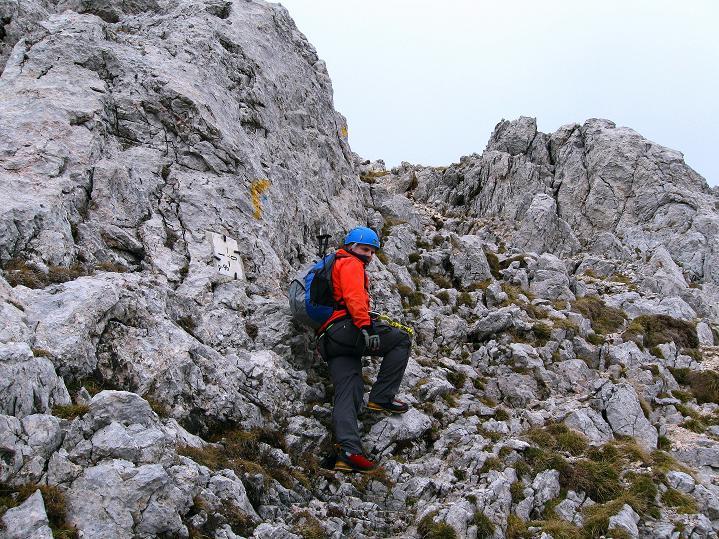 Foto: Andreas Koller / Klettersteig Tour / Via ferrata Crete Rosse und Uiberlacher Klettersteig (2280m) / Im leichten Fels geht es weiter / 22.10.2008 00:27:53