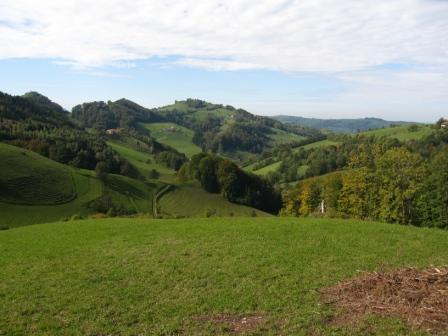 Foto: Maria / Wander Tour / Schönleitner Höhe (Kneipp-/ Friedensweg) / Blick in den Mühlbachgraben / 22.10.2008 19:21:36