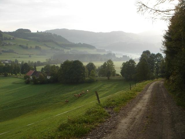 Foto: berglerin / Wander Tour / Trattnerkogel / 03.08.2009 20:02:20