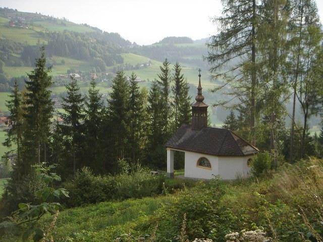 Foto: berglerin / Wander Tour / Trattnerkogel / 03.08.2009 20:01:54