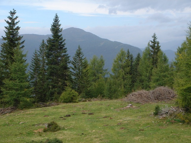 Foto: berglerin / Wander Tour / Trattnerkogel / Gstoder / 03.08.2009 20:01:31
