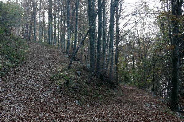 Foto: Lenswork.at / Ch. Streili / Mountainbike Tour / Torbole - Dosso dei Roveri - Navene / Abzweigung am höchsten Punkt der Tour: hier rechts abbiegen / 27.10.2008 14:22:46