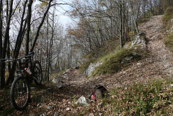 Foto: Lenswork.at / Ch. Streili / Mountainbike Tour / Torbole - Dosso dei Roveri - Navene / 27.10.2008 14:22:16