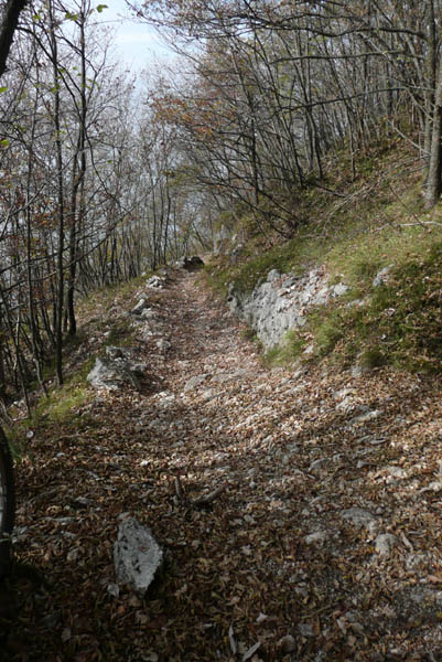 Foto: Lenswork.at / Ch. Streili / Mountainbike Tour / Torbole - Dosso dei Roveri - Navene / 27.10.2008 14:22:09