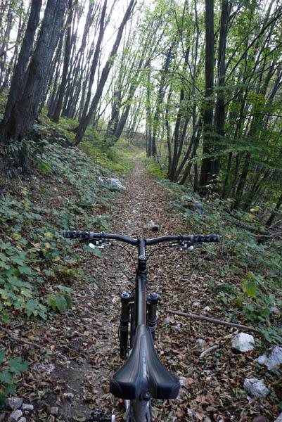 Foto: Lenswork.at / Ch. Streili / Mountainbike Tour / Torbole - Dosso dei Roveri - Navene / 27.10.2008 14:21:54