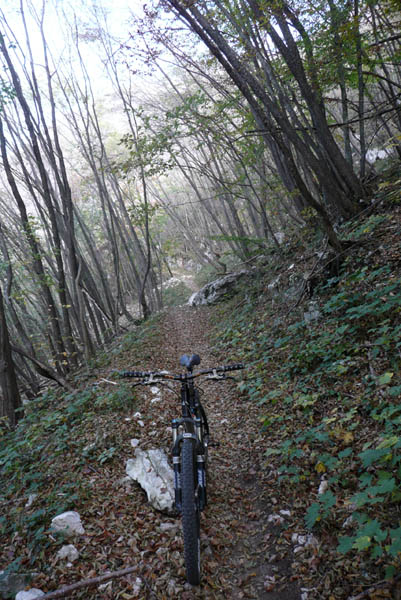 Foto: Lenswork.at / Ch. Streili / Mountainbike Tour / Torbole - Dosso dei Roveri - Navene / 27.10.2008 14:21:46