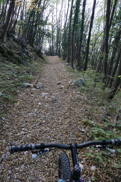 Foto: Lenswork.at / Ch. Streili / Mountainbike Tour / Torbole - Dosso dei Roveri - Navene / 27.10.2008 14:20:56