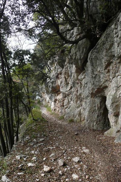 Foto: Lenswork.at / Ch. Streili / Mountainbike Tour / Torbole - Dosso dei Roveri - Navene / 27.10.2008 14:20:32