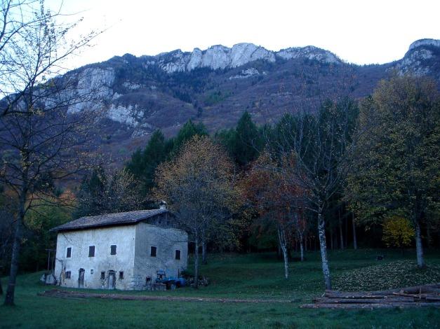 Foto: Manfred Karl / Klettersteig Tour / Via ferrata Ernesto Che Guevara / Durch den oberhalb des Hauses gelegenen Wald erfolgt der Abstieg (Variante b) / 28.10.2008 11:02:37
