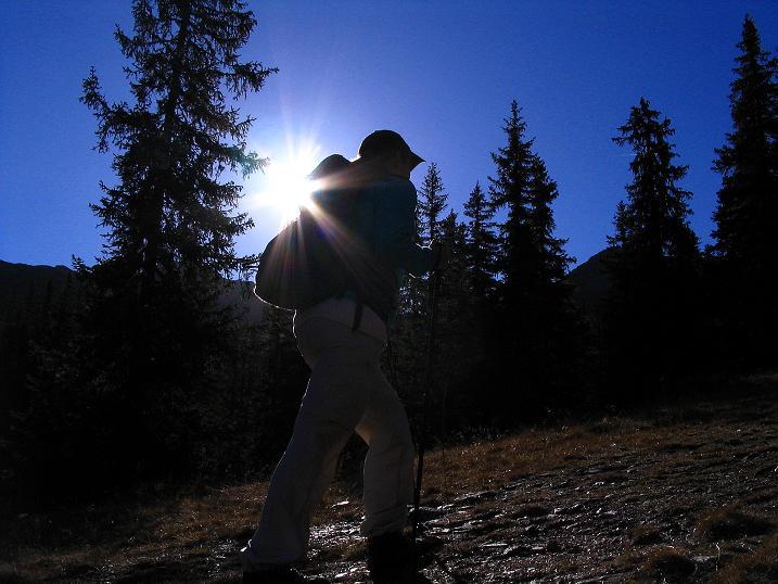 Foto: Andreas Koller / Wander Tour / Kammwanderung zum Schreinl (2154m) / Aufstieg von der Planneralm / 04.11.2008 11:14:52