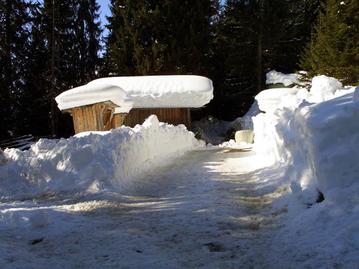 Foto: vince 51 / Schneeschuh Tour / Von Elbigenalp auf die Mutte (2187m) / Wildfütterung / 10.11.2008 22:28:08