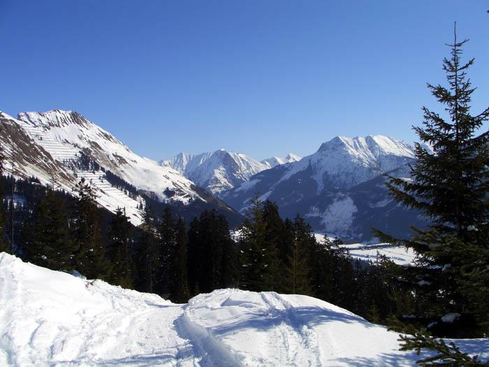 Foto: vince 51 / Schneeschuh Tour / Von Elbigenalp auf die Mutte (2187m) / 10.11.2008 22:25:56