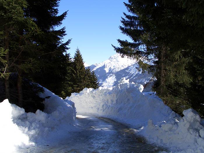 Foto: vince 51 / Schneeschuh Tour / Von Elbigenalp auf die Mutte (2187m) / ....Duch diese hohle Gasse wird er kommen... Höhe der Schneewände ca. 3,50m / 10.11.2008 22:27:35