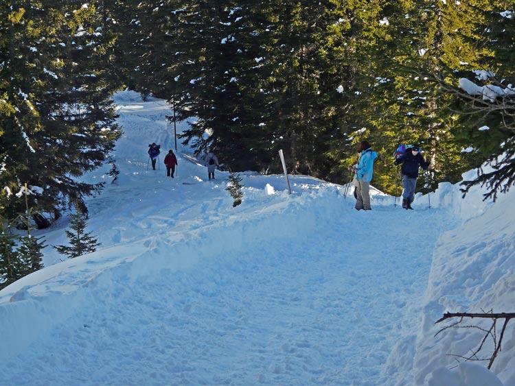 Foto: vince 51 / Schneeschuh Tour / Von Elbigenalp auf die Mutte (2187m) / 29.12.2008 22:09:42