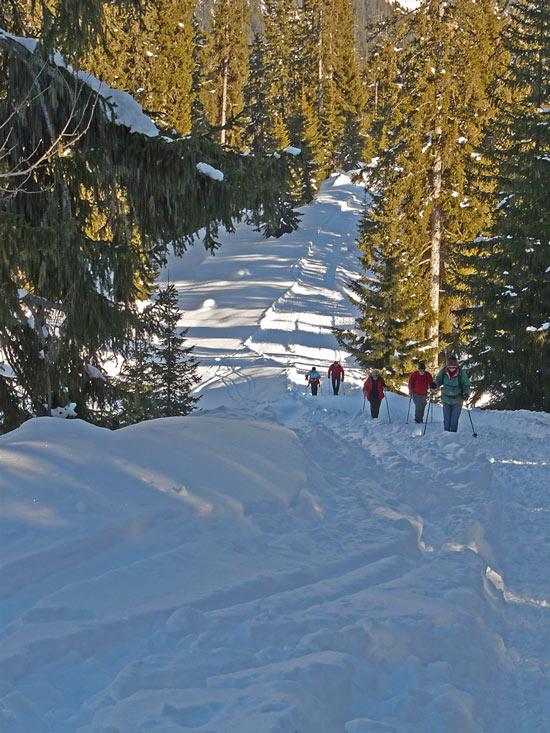 Foto: vince 51 / Schneeschuh Tour / Von Elbigenalp auf die Mutte (2187m) / 29.12.2008 22:06:56