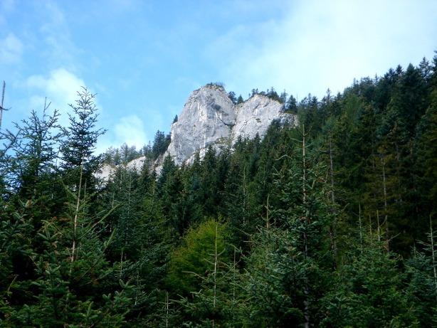 Foto: Manfred Karl / Klettersteig Tour / Mein Land – Dein Land Klettersteig / Predigstuhl vom Zustiegsweg / 13.11.2008 21:42:15