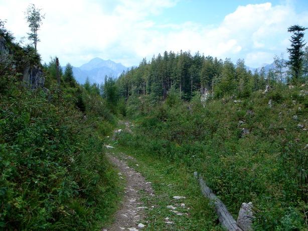 Foto: Manfred Karl / Klettersteig Tour / Mein Land – Dein Land Klettersteig / Am Weg zwischen Predigstuhl und Ewiger Wand / 13.11.2008 21:28:42