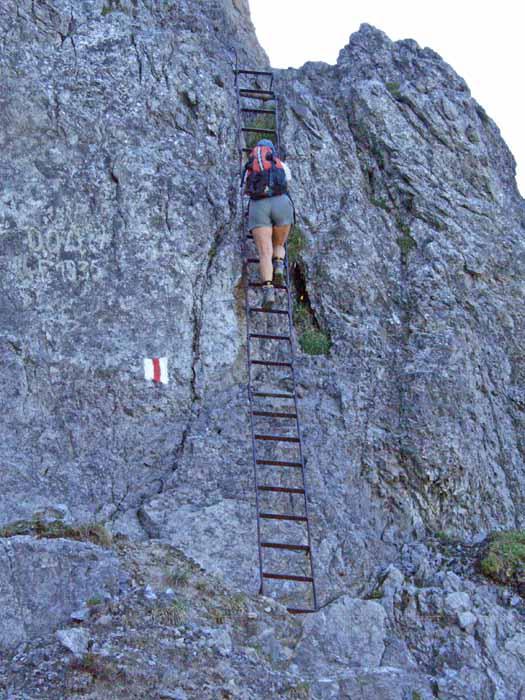 Foto: vince 51 / Wander Tour / Auf die Drei Schwestern / Die obere von 2 Leitern / 14.11.2008 21:54:42