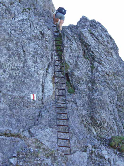 Foto: vince 51 / Wander Tour / Auf die Drei Schwestern / Die obere von 2 Leitern / 14.11.2008 21:54:24