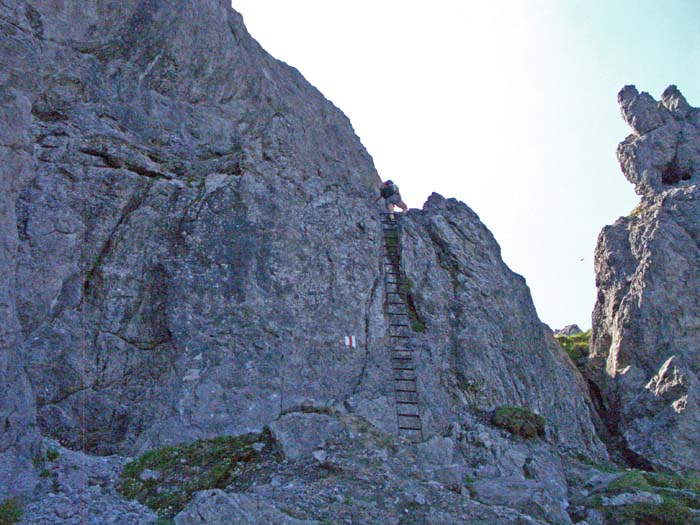 Foto: vince 51 / Wander Tour / Auf die Drei Schwestern / Die obere von 2 Leitern / 14.11.2008 21:53:57