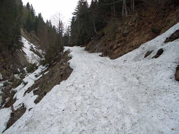 Foto: vince 51 / Schneeschuh Tour / Mit Schneeschuhen auf den Hohen Freschen / Almweg etwas oberhalb des Parkplatzes bei der Brücke (siehe Beschreibung) / 20.11.2008 22:47:20
