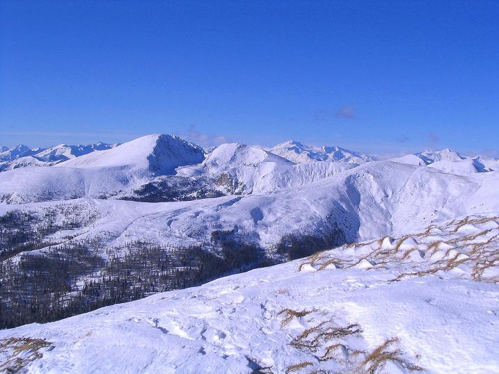 Foto: Andreas Koller / Ski Tour / Vom Falkertsee auf den Falkert (2308m) / Blick zum Großen Rosennock (2440 m) im Nationalpark Nockberge / 24.11.2008 23:02:16
