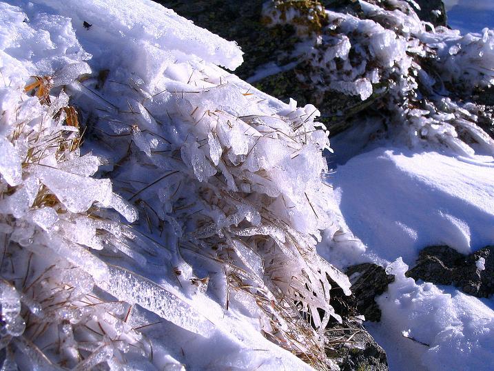 Foto: Andreas Koller / Ski Tour / Vom Falkertsee auf den Falkert (2308m) / Eisfiguren am SW-Grat / 24.11.2008 23:00:28