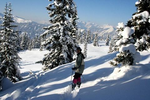 Foto: bergsepp / Ski Tour / Galtenberg Umrundung / 02.12.2008 02:11:04
