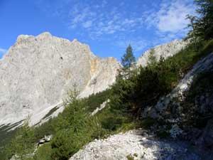 Foto: Datzi / Wander Tour / Rundtour von der Winterhöh ( Wildalpen) mit Anstieg zur Schaufelwand und Brandstein ( Biwak ) u.Abstieg über dem Teufelssee / Ein Blick vom Sommerweg zum Schafhalsattel Richtung Gr. Griesstein / 06.12.2008 15:06:04