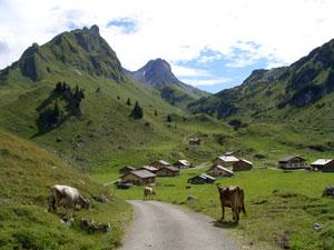 Foto: Datzi / Wander Tour / Rundtour im Gr. Walsertal auf die Rote Wand ( Biwak ) / Laguzalpe / 06.12.2008 18:37:19