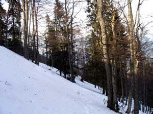 Foto: Datzi / Schneeschuh Tour / Rundtour Göller (Biwak) - Gippel - Schwarzauer Gippel / Der Aufstieg zum Waldhüttelsattel / 07.12.2008 09:06:08