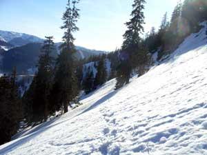Foto: Datzi / Schneeschuh Tour / Rundtour Göller (Biwak) - Gippel - Schwarzauer Gippel / Das Steilgelände mit Blick zurück / 07.12.2008 09:07:25