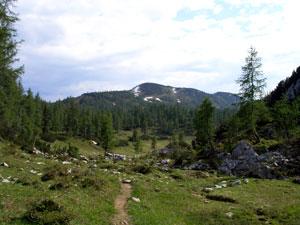Foto: Datzi / Wander Tour / Rundtour über das Gr. Tragl ( Biwak ) und Hochkasten / Der Ausstieg aus den Salzsteig / 08.12.2008 12:29:13