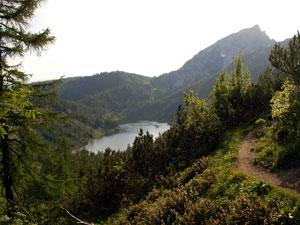 Foto: Datzi / Wander Tour / Rundtour über das Gr. Tragl ( Biwak ) und Hochkasten / Der Weg auf der Steirerseeleiten mit Blick zum Steirersee / 08.12.2008 12:29:28