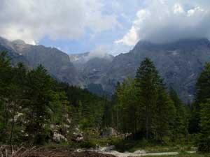 Foto: Datzi / Wander Tour / Rundtour über den Schemlberg (Biwak) zum Temelberg / 08.12.2008 15:11:44