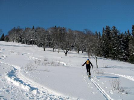 Foto: Kurt Schall / Ski Tour / Türnitzer Schwarzenberg 1096 m Von Osten über die Torstallwiese / 11.12.2008 12:24:26