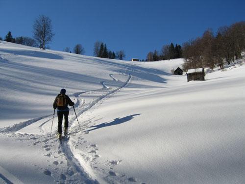 Foto: Kurt Schall / Ski Tour / Türnitzer Schwarzenberg 1096 m Von Osten über die Torstallwiese / 11.12.2008 12:24:31