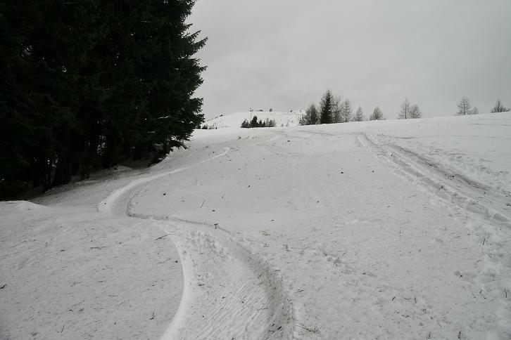 Foto: Andreas Koller / Ski Tour / Leichte Tour auf die Gemeindealpe (1626m) / 15.12.2008 01:07:05