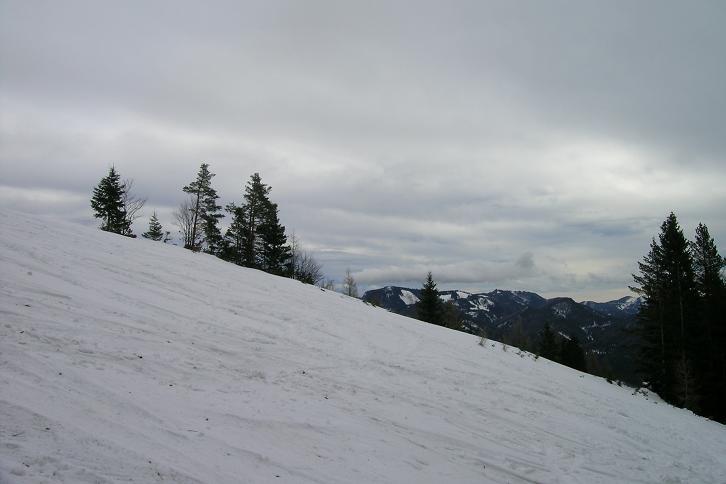 Foto: Andreas Koller / Ski Tour / Leichte Tour auf die Gemeindealpe (1626m) / 15.12.2008 01:06:59