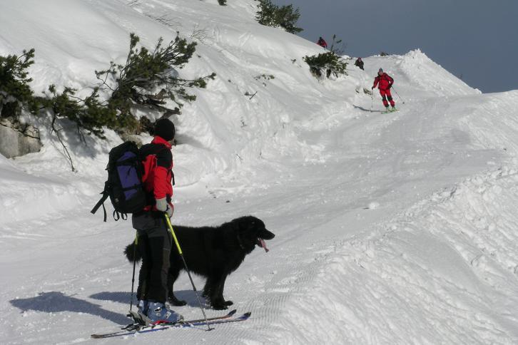 Foto: Andreas Koller / Ski Tour / Leichte Tour auf die Gemeindealpe (1626m) / 15.12.2008 01:06:40