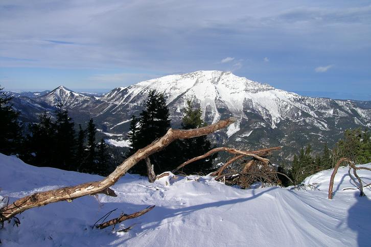 Foto: Andreas Koller / Ski Tour / Leichte Tour auf die Gemeindealpe (1626m) / 15.12.2008 01:06:25