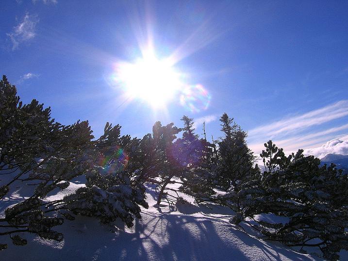 Foto: Andreas Koller / Ski Tour / Vom Plannerkessel in den Gullinggraben (2054m) / Im Latschengürtel zur Hintergullingspitze / 15.12.2008 01:35:19