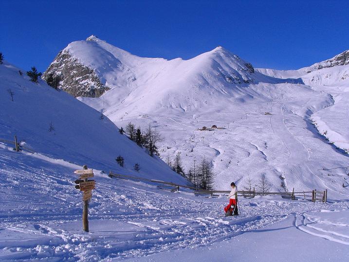 Foto: Andreas Koller / Ski Tour / Anfängertour auf den Spieler (2080m) / Blick vom Sattel zum Großen Iffinger (2581 m) / 15.12.2008 02:20:14