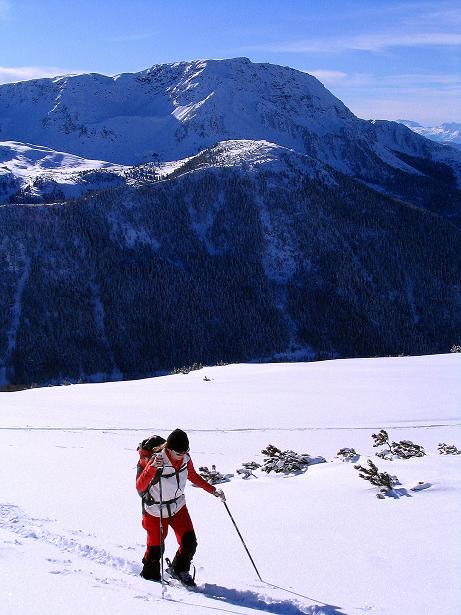 Foto: Andreas Koller / Ski Tour / Von Reinswald auf die Getrumspitze (2589m) / Die Kulisse bildet der Villanderer Berg (2509 m) / 15.12.2008 03:01:56
