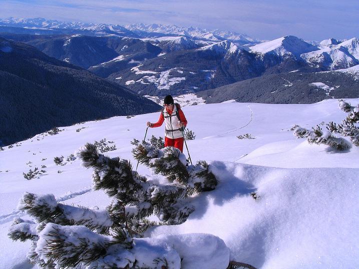 Foto: Andreas Koller / Ski Tour / Von Reinswald auf die Getrumspitze (2589m) / Aufstieg mit Blick zur Ortlergruppe / 15.12.2008 03:01:32