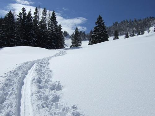 Foto: hofchri / Ski Tour / Zwölferhorn (1521m) von Tiefbrunnau über Stubneralm / 15.12.2008 20:52:50